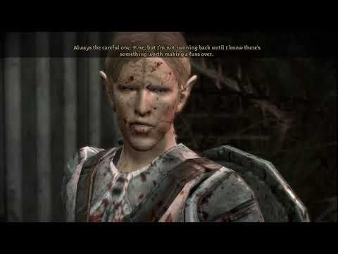 Dragon Age Origins Male Dalish Elf Beginning