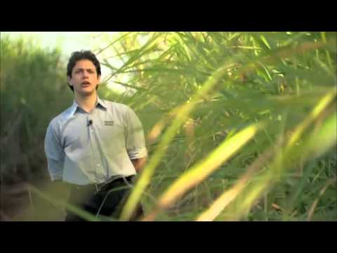 Ethanol production Brazil   Atlas Copco application movie CEV Vicentina