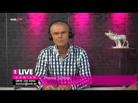 "Domian 2015-11-19 ""Schock"" HDTV"