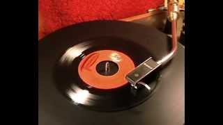 Tim Tam & The Turn-Ons - Opelia - 1966 45rpm