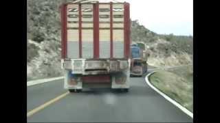 el trailero demente