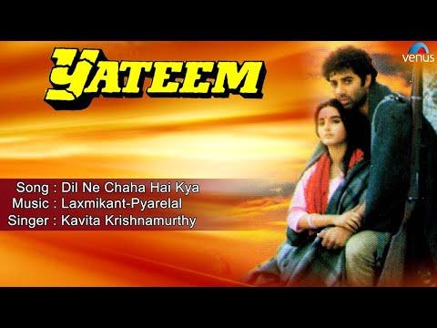 Yateem : Dil Ne Chaha Hai Kya Full Audio Song   Sunny Deol, Farah  