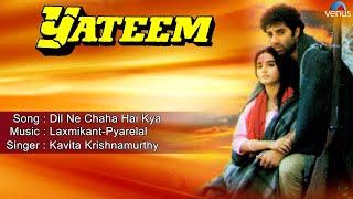 Yateem : Dil Ne Chaha Hai Kya Full Audio Song | Sunny Deol, Farah |