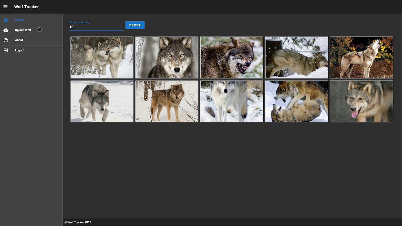 Wolf Tracker: Vue js + Azure Functions + more for a Secure
