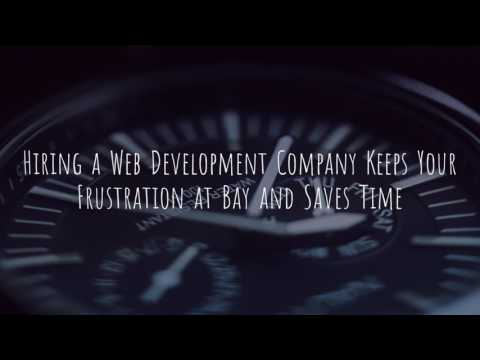 Why you should hire a web Development Company ?