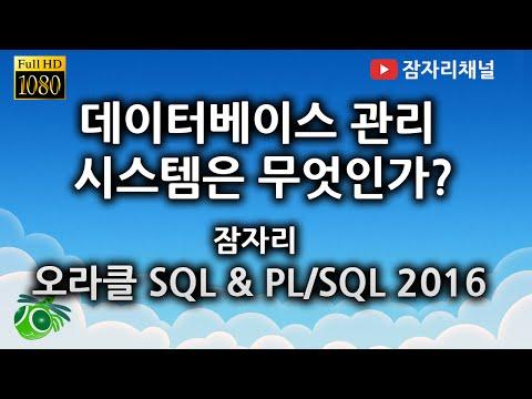 데이터베이스 관리 시스템 이해하기 - 오라클 SQL & PL/SQL 강좌 jamjalee on oracle tutorial