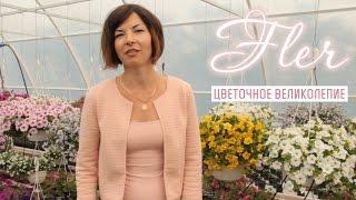 Цветение в питомнике Флер - декоративные растения Симферополь(, 2015-05-27T02:59:28.000Z)