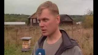 Пчеловодство - отличный вариант домашнего бизнеса(http://stay-online.ru Загляните на блог, чтобы узнать о других идеях создания собственного домашнего бизнеса с нуля..., 2010-05-28T08:59:10.000Z)