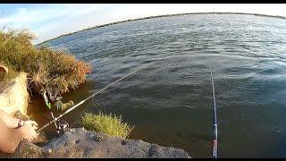 Игра Веселая рыбалка онлайн (Funny Fishing) - играть ...