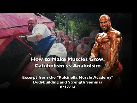 How to Make Muscles Grow: Catabolism vs Anabolism
