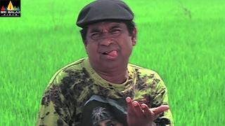 Attili Sattibabu LKG Movie Scenes | Brahmanandam Comedy with Kausha | Telugu Comedy Scenes