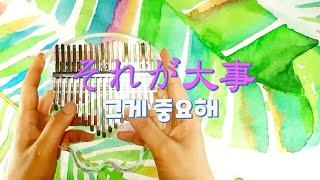 그게중요해 #노노카 #それが大事 kalimba model : kimi rainbow kalimba cat paw Luau, NEKoz, LingTing 칼림바 외 악기 구입 : http://musicianmarket.co.kr/ (10% ...