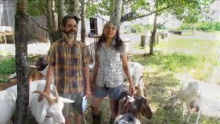 La Fromagerie Cornes et Sabots