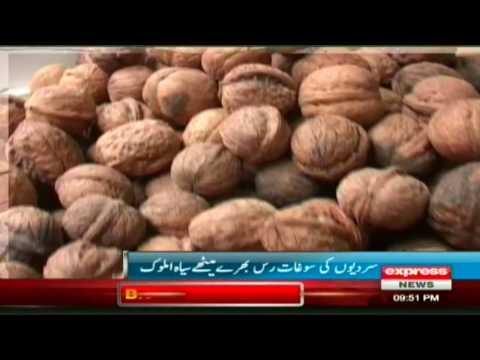 Dry Fruit Black in Snowfall Report by sherin zada