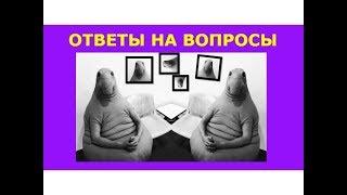 Смотреть видео О политике. Главная проблема России. Шапка для Youtube канала. Как достичь успеха. онлайн