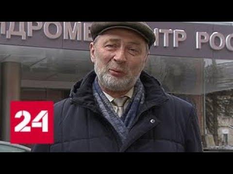 Вильфанд: погода в выходные будет даже лучше, чем по Пушкину - Россия 24