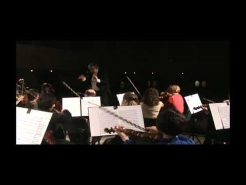Haydn No.94 Sinfonie - Paukenschlag -  2 Satz
