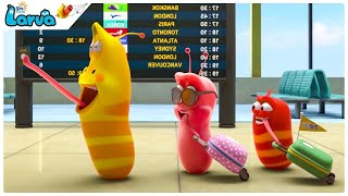 The House and The Children - BEST of Larva FUNNY Moments