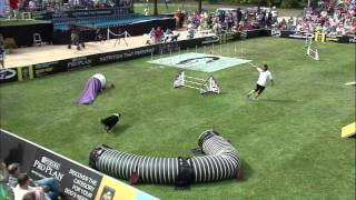 Large Dog Agility 1st Place - 2015 Incredible Dog Challenge National Finals Gray Summit, MO