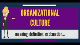 What is ORGANIZATIONAL CULTURE? What does ORGANIZATIONAL CULTURE mean?