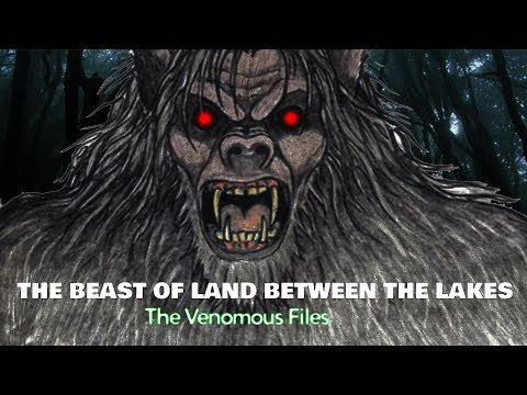 The Beast of Land Between the Lakes l The Venomous Files
