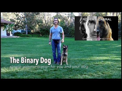 The Binary Dog - Robert Cabral's Dog Training and Approach to Canine Communication #3