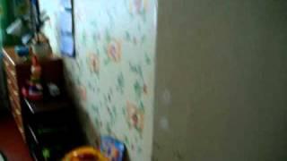 Двухкомнатная квартира в 35 мин. от м. Московская(Продается 2ком квартира в Новом Свете в 35 мин. от м. Московская в бывшей центральной усадьбе совхоза-миллион..., 2010-09-26T14:26:55.000Z)
