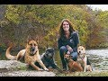 Dog Trainer Bri Rice, Joplin Mo. Area or International Clients