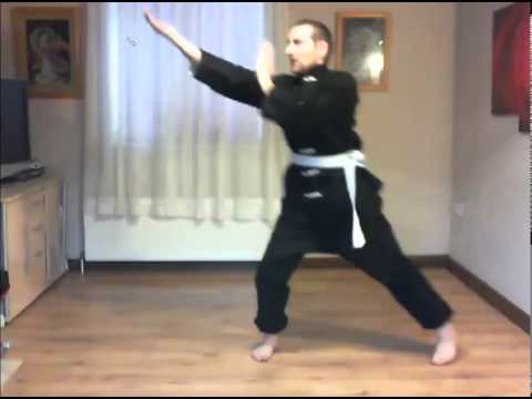 Analysis of Online Students Yellow Belt A Material - Sane121