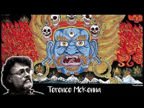 Shamanic Techniques Lost by the Modern Artist (Terence Mckenna)
