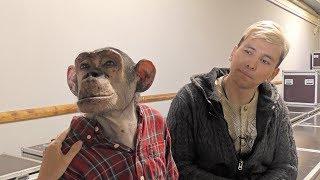 Шимпанзе Микки и дрессировщик Мурад Хыдыров: гости Ижевского циркового фестиваля