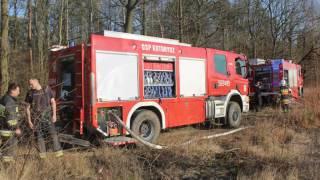 Pożar na skraju lasu Pęchery i Łbisk