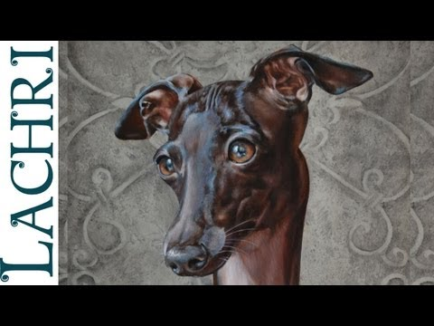 "Time Lapse Italian Greyhound  oil over acrylic painting  ""Speed Painting"" demonstration by Lachri"