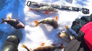 Зимняя Рыбалка Очень Уловистая Снасть на Окуня