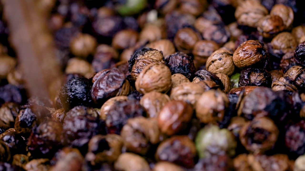 Kacang kenari dapat meningkatkan kekuatan otak
