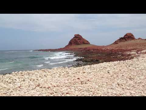 Di Hamri, marine protected area, Socotra island, Yemen, November 2018