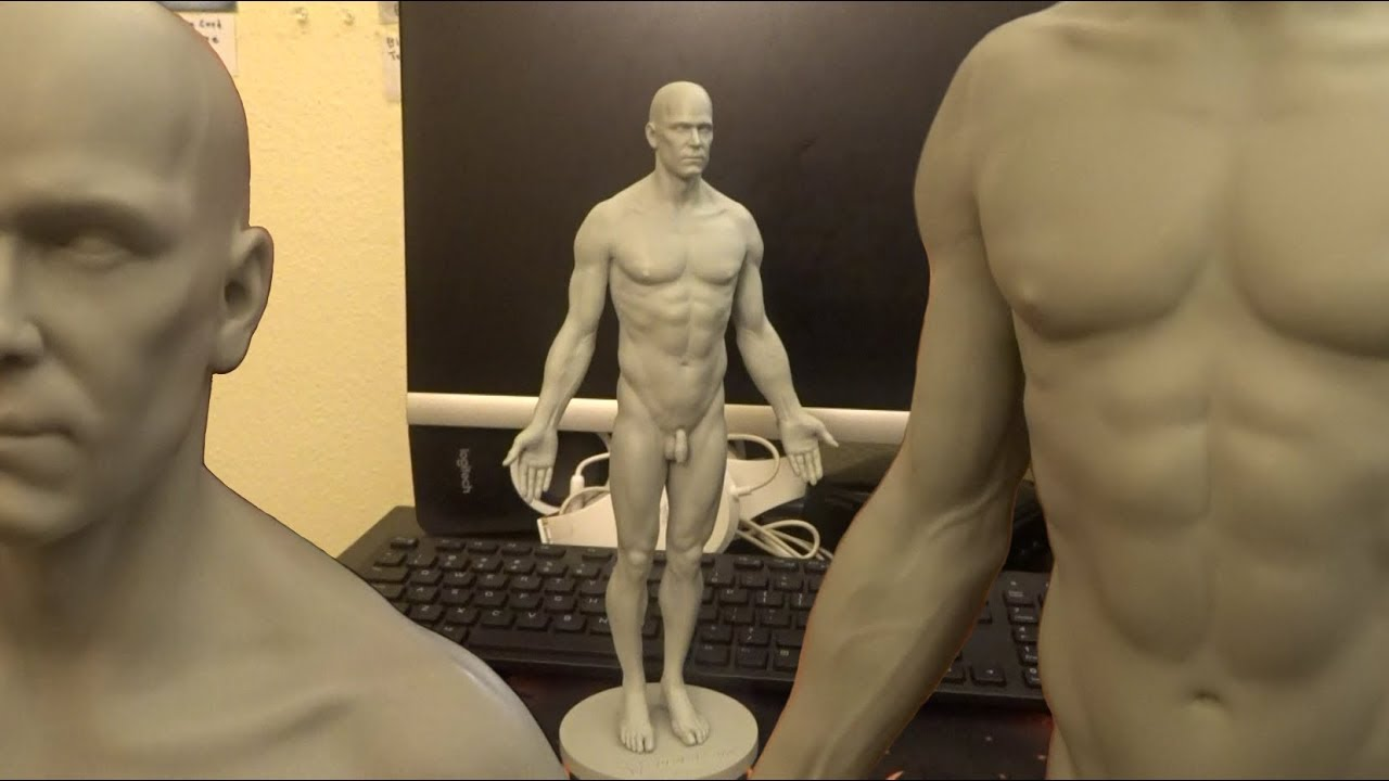 3dtotals Male Full Skin Anatomy Figure Unboxing Review My Last