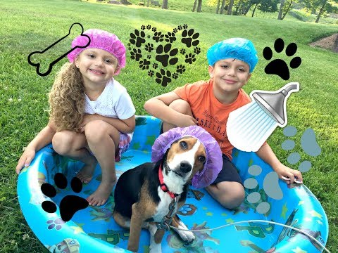 Download Youtube: Doggy Dog Bath Time for New Puppy! Baby Gia and Gav Fun!! Cute Bubble Outdoor Play!