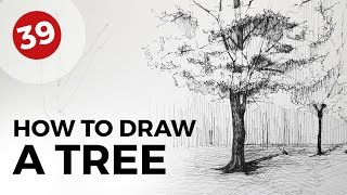 How to Draw a Tree | Daily Architecture Sketches #39