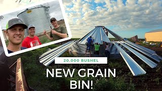 Building a GRAIN BIN from Start to Finish! *SATISFYING*