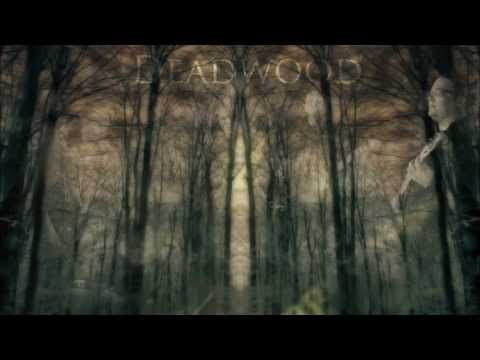 Deadwood - Picturing A Sense Of Loss