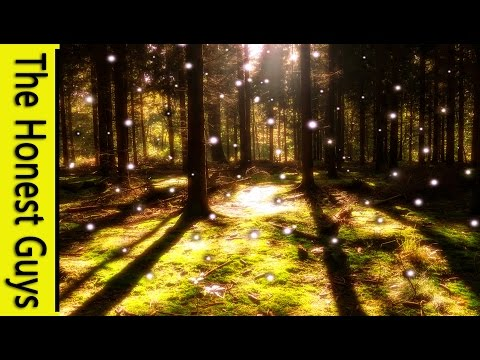 """Guided Sleep Meditation """"On The Edge of Faerie"""" (Guided Meditation)"""