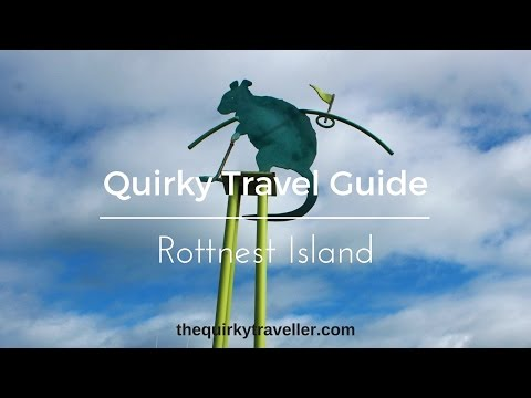 Quirky Travel Guide: Rottnest Island, Western Australia