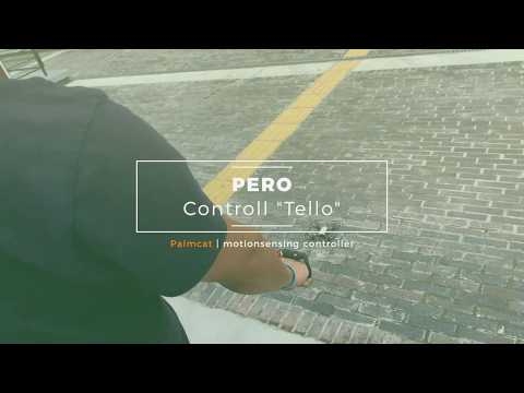 Drone controll by Gesture with PERO