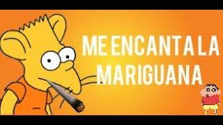 TROLLEO A UNA RATA QUE FUMA MARIGUANA - TROLLEO #18