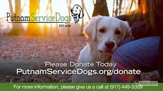 Putnam Service Dogs Homepage Video