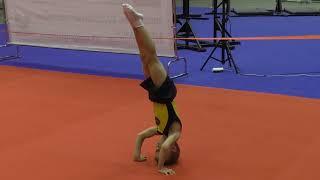 спортивная гимнастика мальчик 6 лет - Челябинск