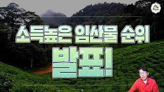 임산물소득순위 발표 산마늘 산딸기 참나물 산림 임업 농…