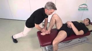 Manipulation des membres en ostéopathie structurelle
