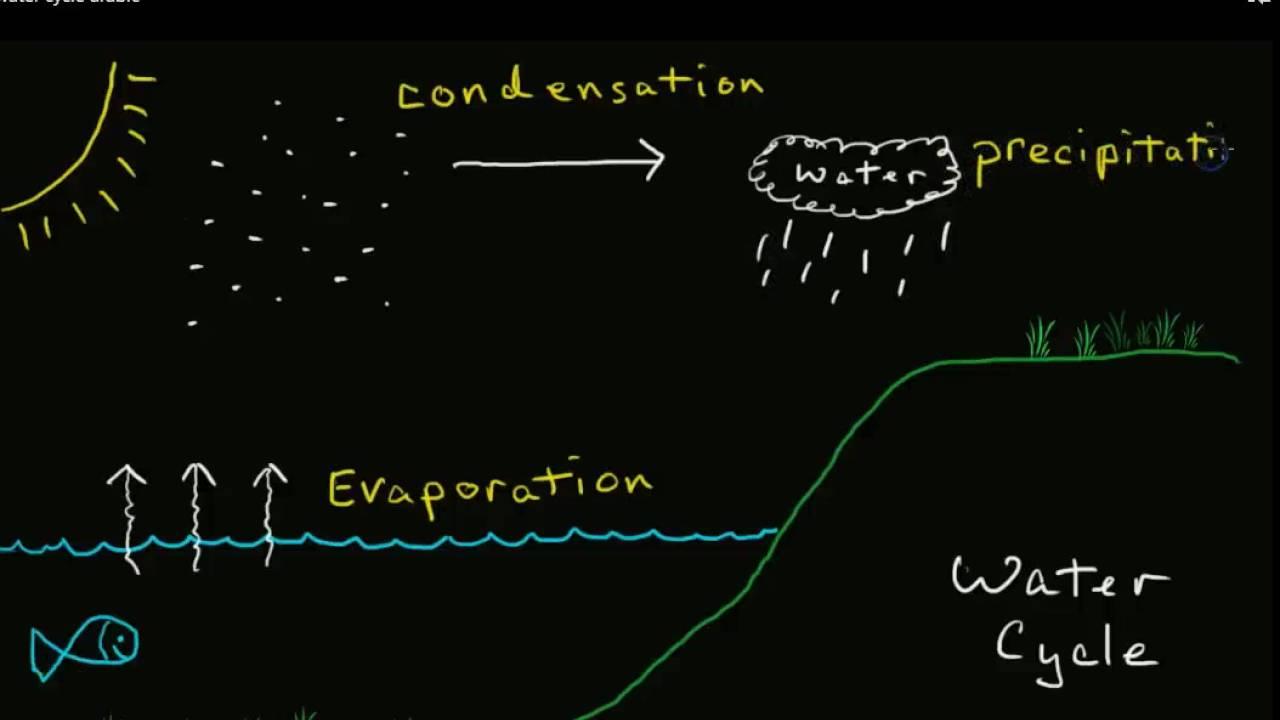 Water Cycle in Arabic - using online translator